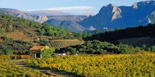 images-languedoc